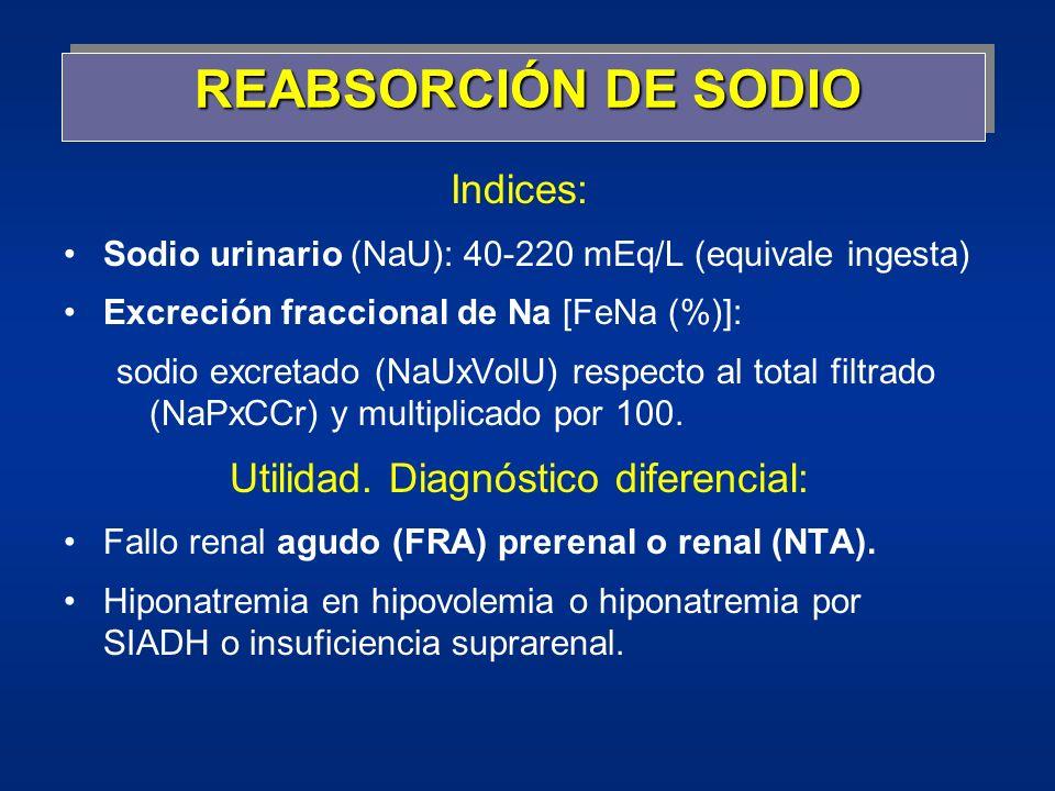 REABSORCIÓN DE SODIO Indices: Sodio urinario (NaU): 40-220 mEq/L (equivale ingesta) Excreción fraccional de Na [FeNa (%)]: sodio excretado (NaUxVolU)