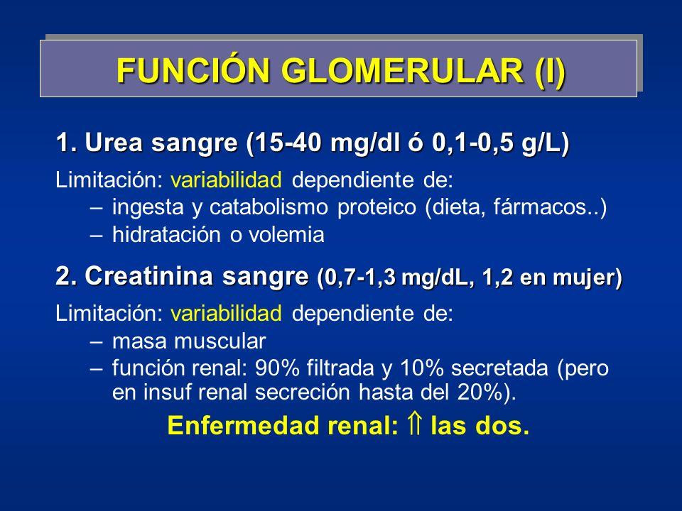 FUNCIÓN GLOMERULAR (I) 1. Urea sangre (15-40 mg/dl ó 0,1-0,5 g/L) Limitación: variabilidad dependiente de: –ingesta y catabolismo proteico (dieta, fár