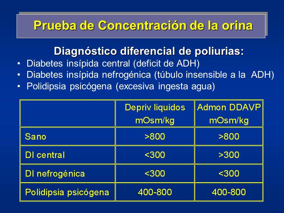 Prueba de Concentración de la orina Diagnóstico diferencial de poliurias: Diabetes insípida central (deficit de ADH) Diabetes insípida nefrogénica (tú