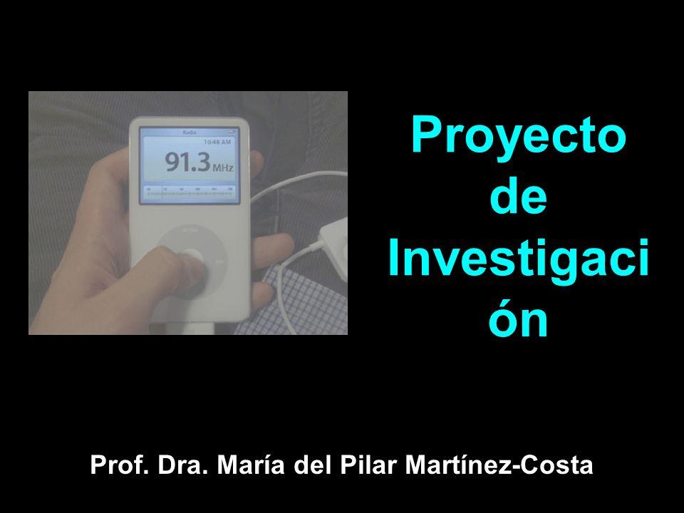 Proyecto de Investigaci ón Prof. Dra. María del Pilar Martínez-Costa