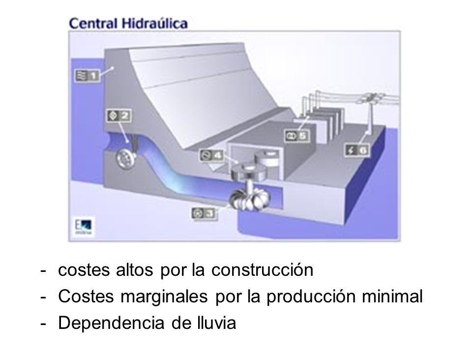 -costes altos por la construcción -Costes marginales por la producción minimal -Dependencia de lluvia