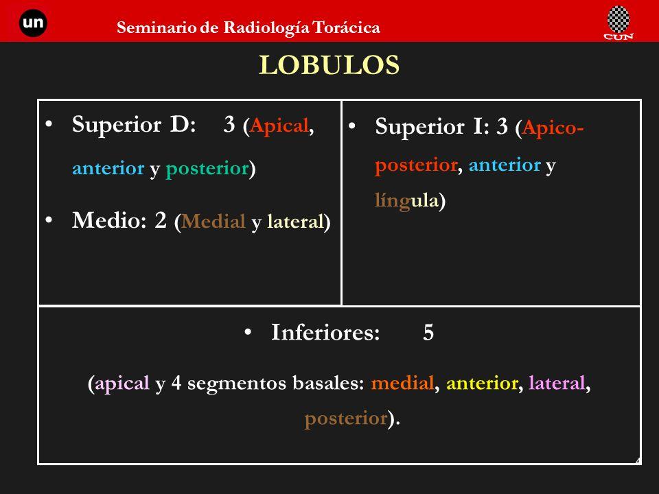 Seminario de Radiología Torácica 4 LOBULOS Superior D:3 (Apical, anterior y posterior) Medio: 2 (Medial y lateral) Superior I: 3 (Apico- posterior, an