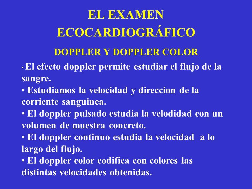 EL EXAMEN ECOCARDIOGRÁFICO DOPPLER Y DOPPLER COLOR El efecto doppler permite estudiar el flujo de la sangre. Estudiamos la velocidad y direccion de la