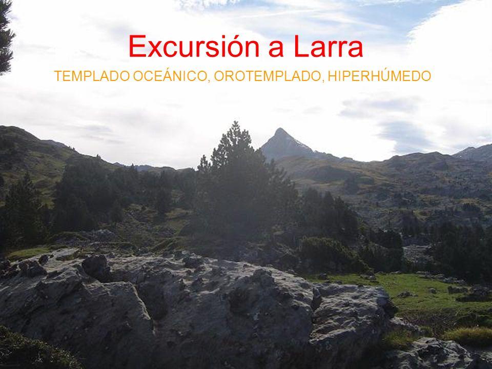 Excursión a Larra TEMPLADO OCEÁNICO, OROTEMPLADO, HIPERHÚMEDO