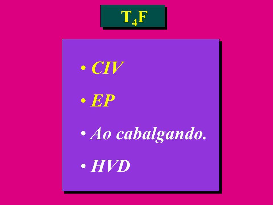 CIV EP Ao cabalgando. HVD T4FT4F