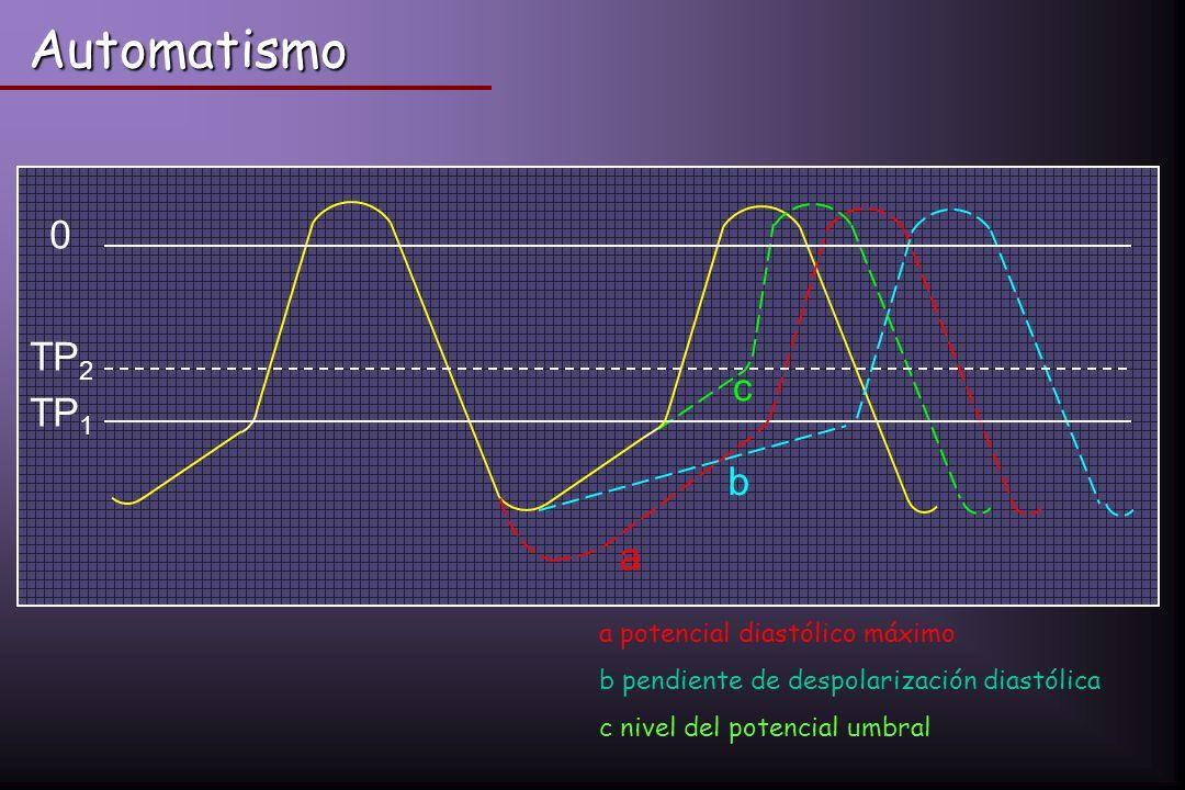 Automatismo 0 TP 1 TP 2 a b c a potencial diastólico máximo b pendiente de despolarización diastólica c nivel del potencial umbral