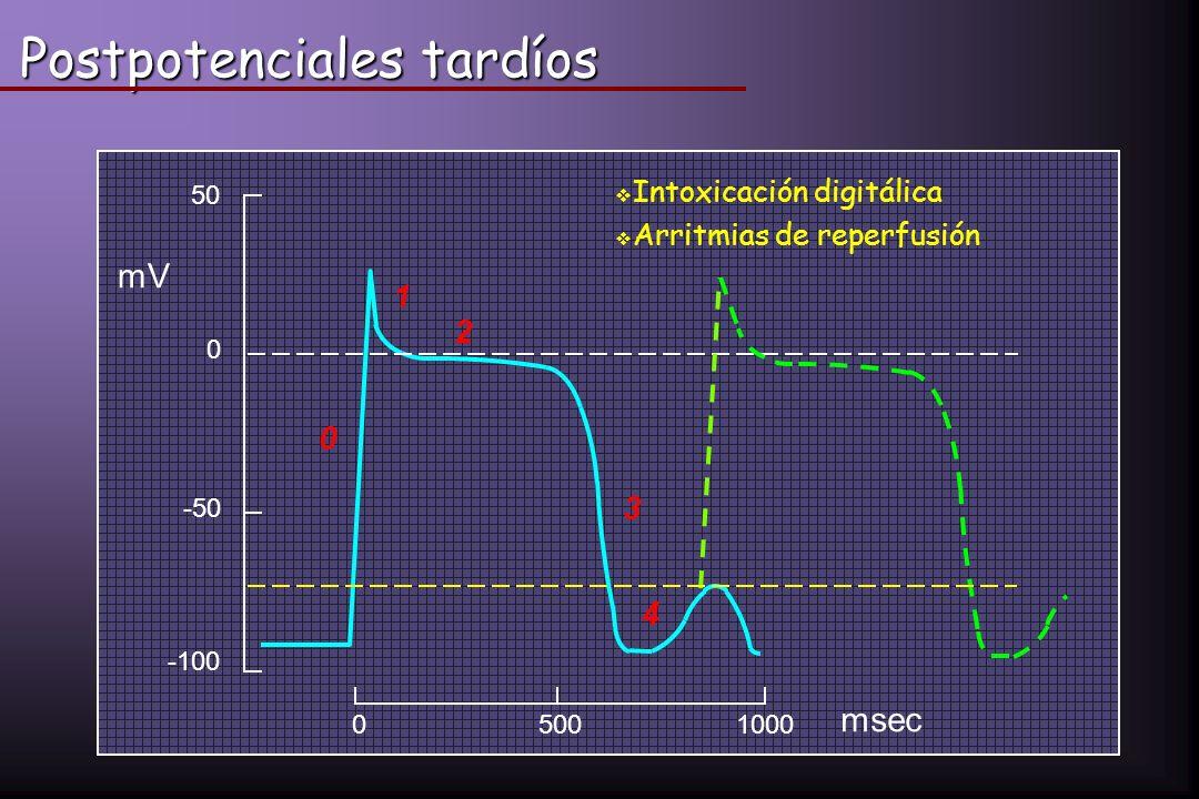 Postpotenciales tardíos 05001000 0 1 2 3 4 mV msec 50 0 -50 -100 Intoxicación digitálica Arritmias de reperfusión
