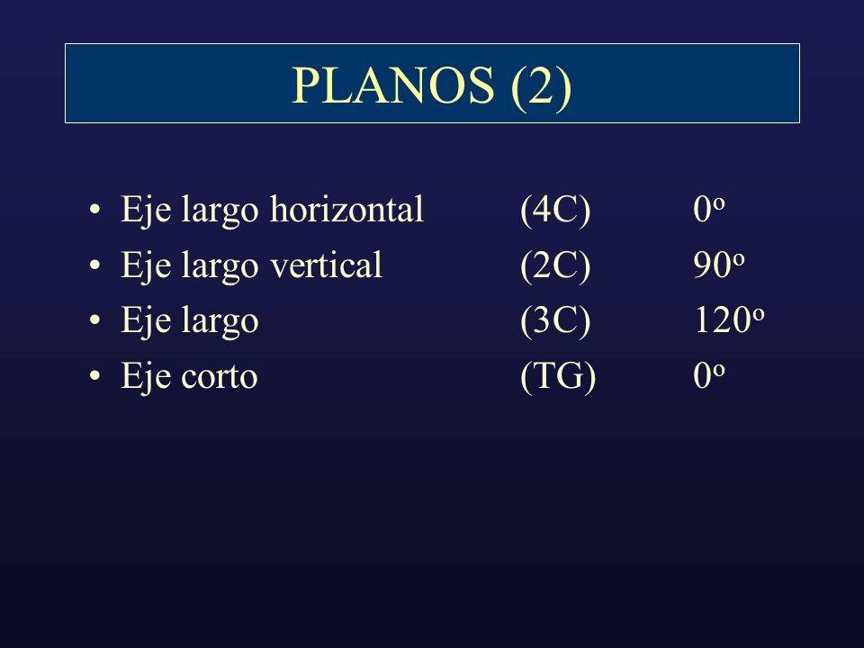 Eje largo horizontal (4C)0 o Eje largo vertical (2C) 90 o Eje largo (3C) 120 o Eje corto (TG) 0 o PLANOS (2)