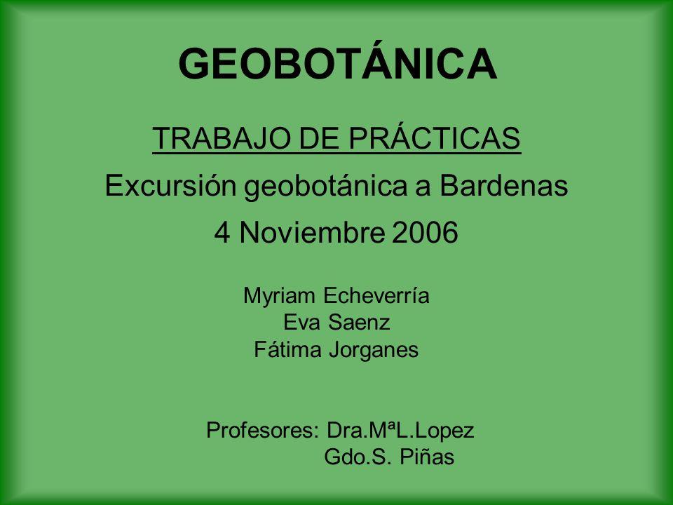 GEOBOTÁNICA TRABAJO DE PRÁCTICAS Excursión geobotánica a Bardenas 4 Noviembre 2006 Myriam Echeverría Eva Saenz Fátima Jorganes Profesores: Dra.MªL.Lopez Gdo.S.