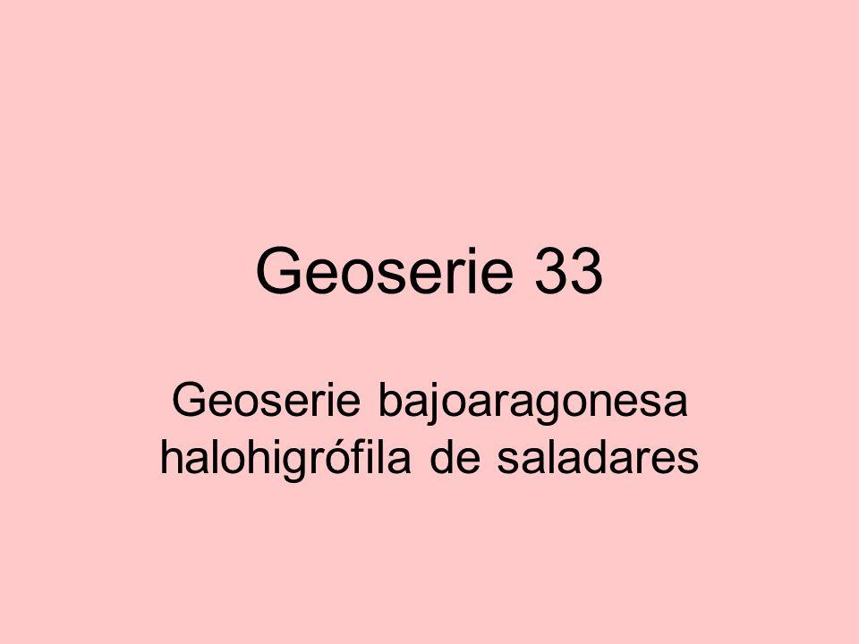 Geoserie 33 Geoserie bajoaragonesa halohigrófila de saladares