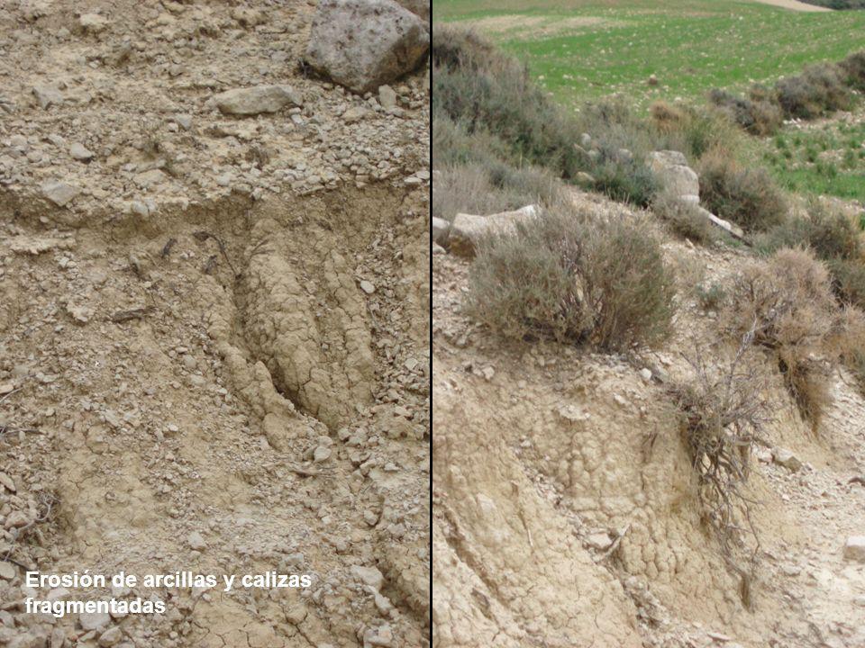 Erosión de arcillas y calizas fragmentadas
