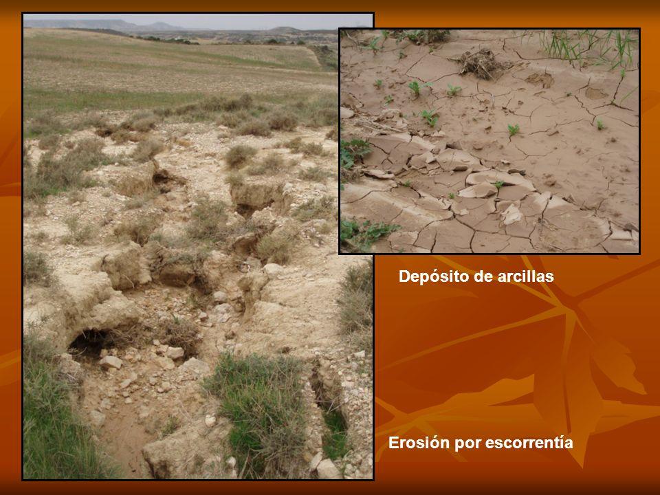 Erosión por escorrentía Depósito de arcillas
