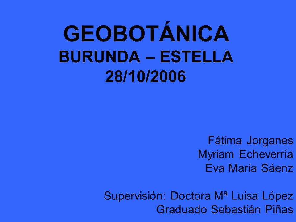 GEOBOTÁNICA BURUNDA – ESTELLA 28/10/2006 Fátima Jorganes Myriam Echeverría Eva María Sáenz Supervisión: Doctora Mª Luisa López Graduado Sebastián Piña