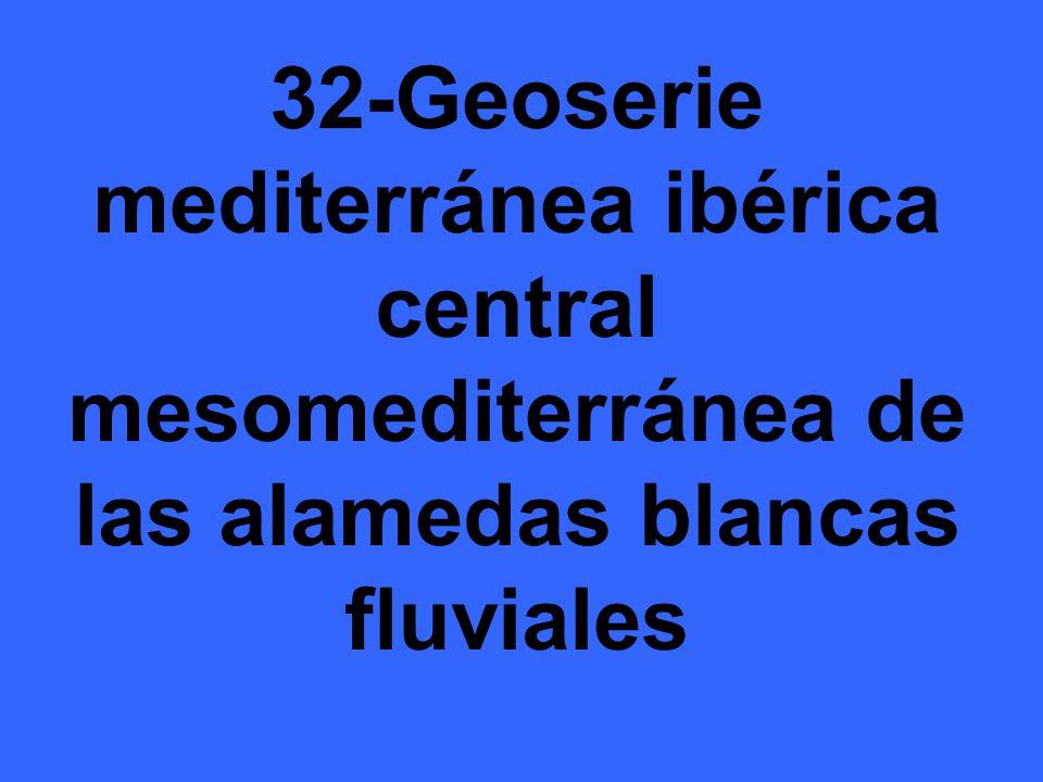 32-Geoserie mediterránea ibérica central mesomediterránea de las alamedas blancas fluviales