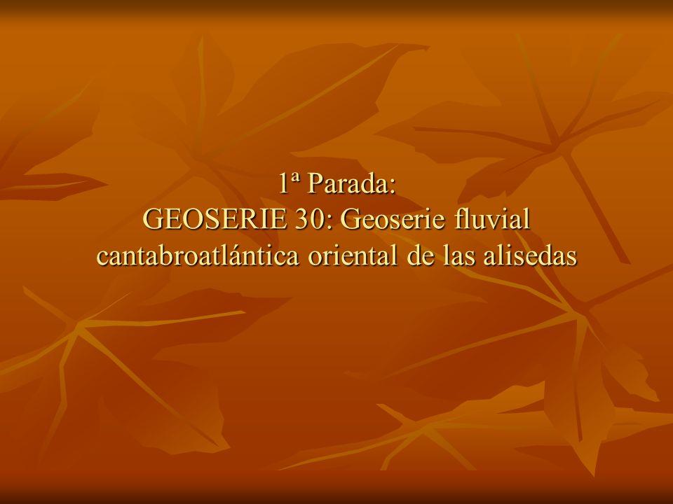 1ª Parada: GEOSERIE 30: Geoserie fluvial cantabroatlántica oriental de las alisedas