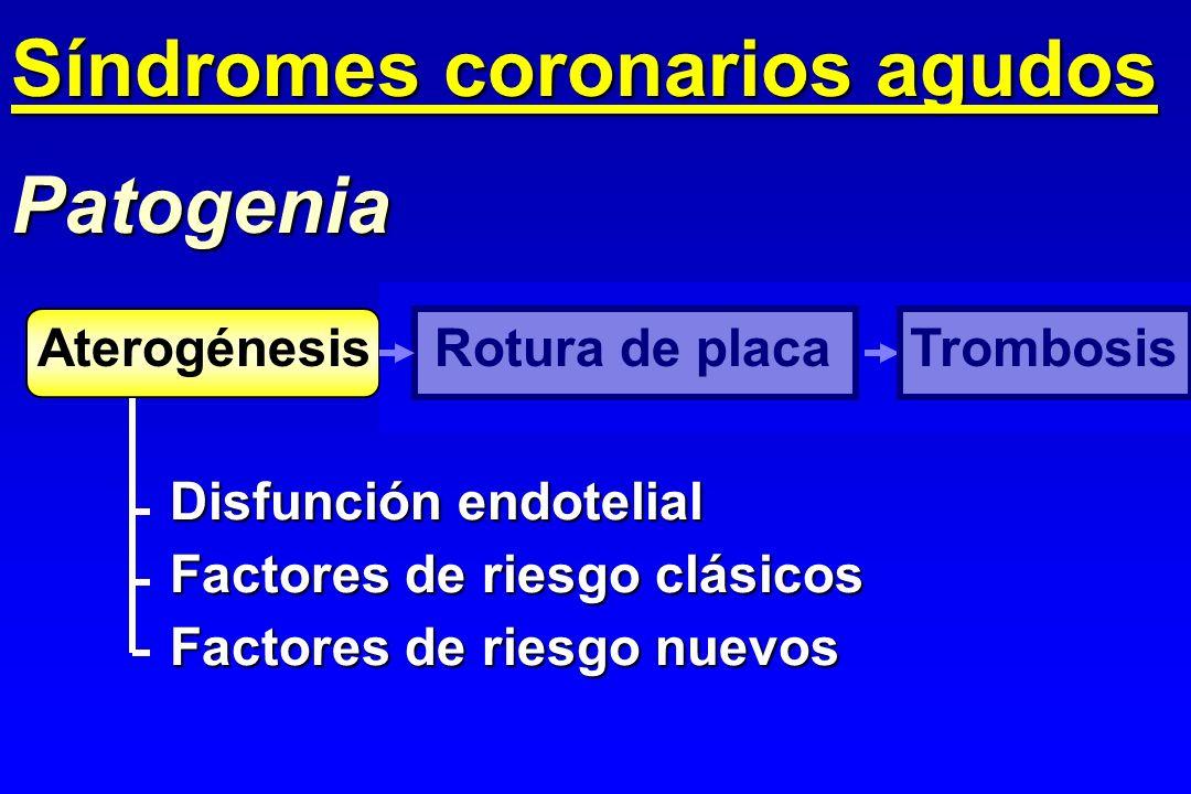 Patogenia Disfunción endotelial Factores de riesgo clásicos Factores de riesgo nuevos AterogénesisRotura de placaTrombosis Síndromes coronarios agudos