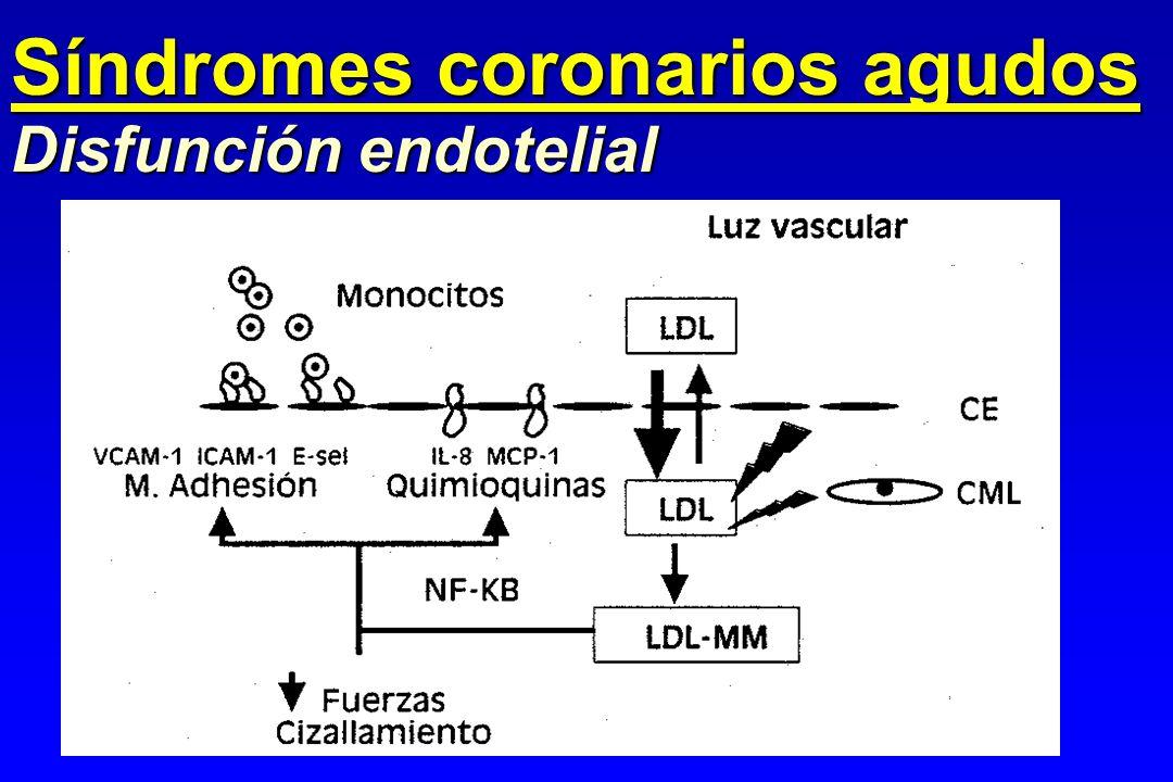 Disfunción endotelial Síndromes coronarios agudos