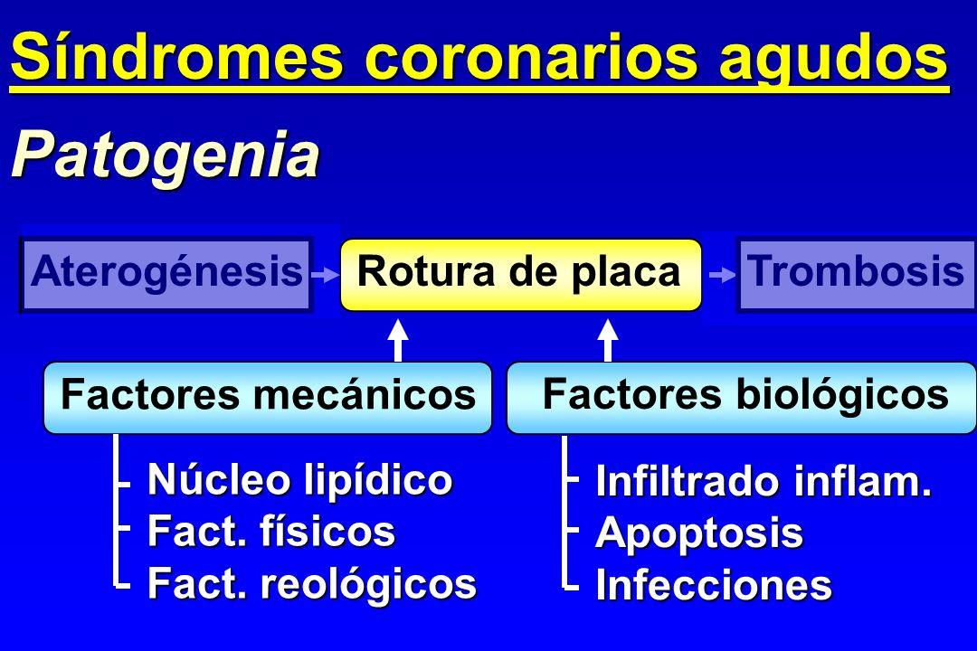 Patogenia Factores mecánicos Factores biológicos Núcleo lipídico Fact. físicos Fact. reológicos Infiltrado inflam. ApoptosisInfecciones AterogénesisRo
