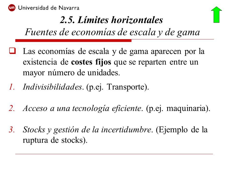 Las economías de escala y de gama aparecen por la existencia de costes fijos que se reparten entre un mayor número de unidades. 1.Indivisibilidades. (
