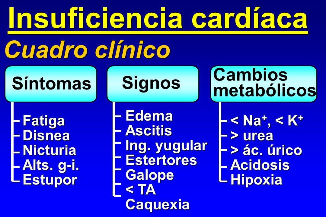 ECG / Rx. Tórax EcocardiogramaBNPCausas Insuficiencia cardíaca Proc. diagnósticos