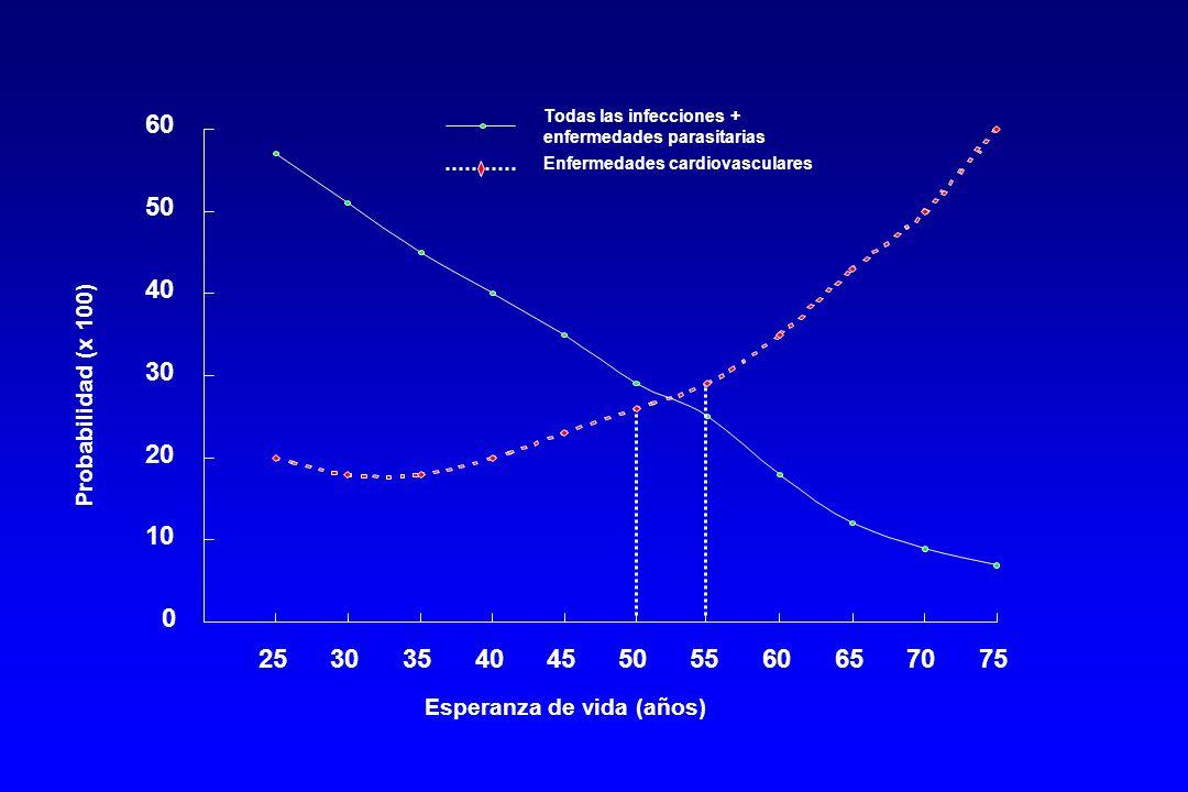 0 10 20 30 40 50 60 2530354045505560657075 Todas las infecciones + enfermedades parasitarias Enfermedades cardiovasculares Esperanza de vida (años) Probabilidad (x 100)