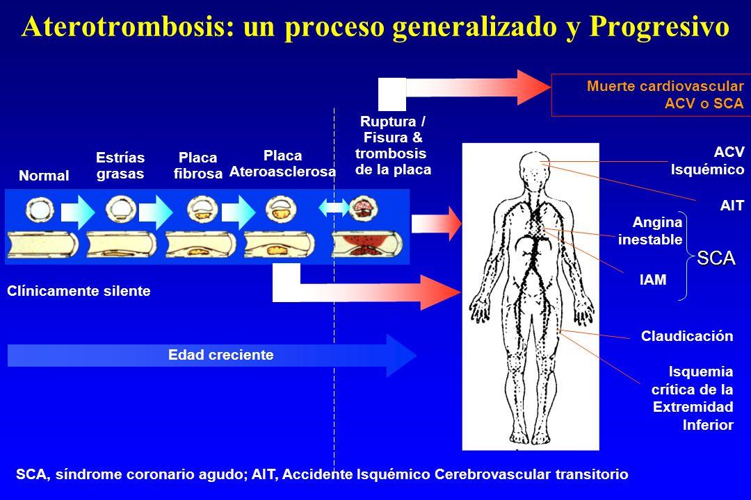 Aterotrombosis: un proceso generalizado y Progresivo Normal Estrías grasas Placa fibrosa Placa Ateroasclerosa Ruptura / Fisura & trombosis de la placa Clínicamente silente Edad creciente SCA, síndrome coronario agudo; AIT, Accidente Isquémico Cerebrovascular transitorio IAM Angina inestableSCA Claudicación Isquemia crítica de la Extremidad Inferior ACV Isquémico AIT Muerte cardiovascular ACV o SCA