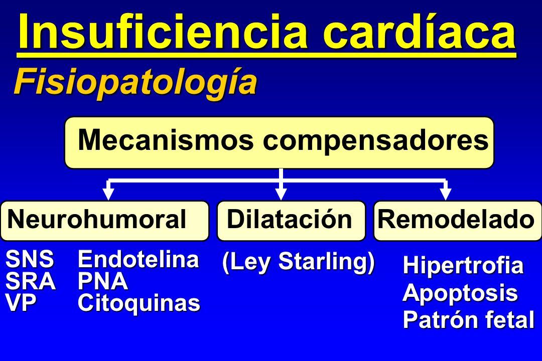 Insuficiencia cardíaca Fisiopatología Mecanismos compensadores Neurohumoral Dilatación Remodelado HipertrofiaApoptosis Patrón fetal SNSSRAVP (Ley Star