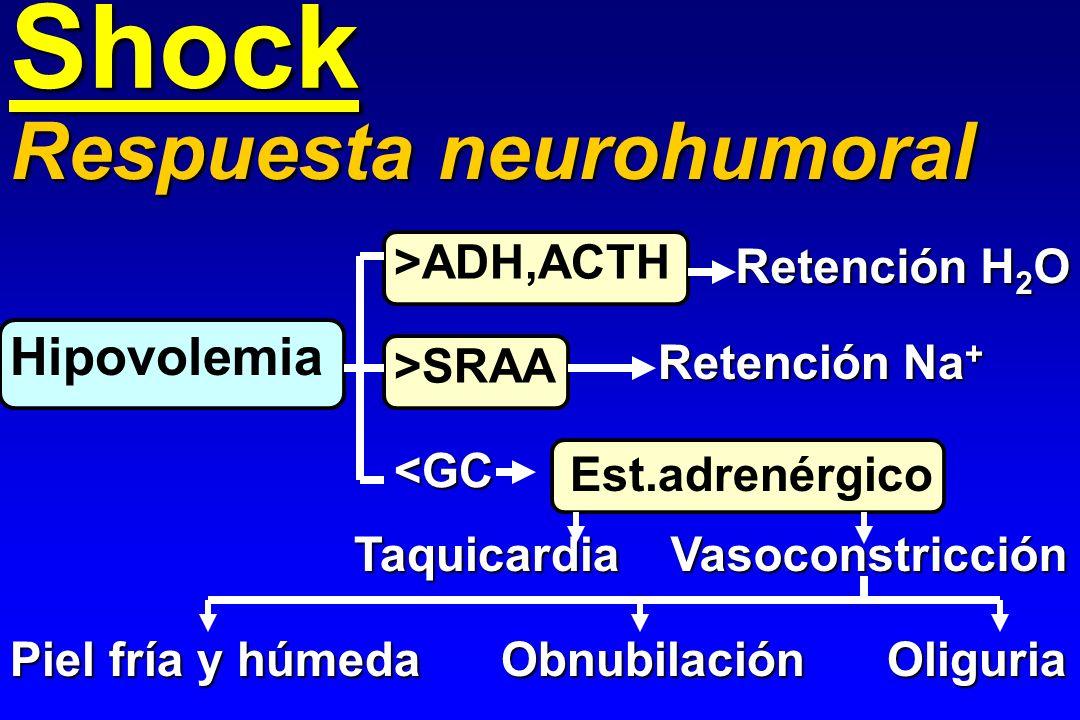 Shock Hipovolemia Respuesta neurohumoral >ADH,ACTH >SRAA <GC Retención H 2 O Retención Na + Est.adrenérgico TaquicardiaVasoconstricción Piel fría y hú