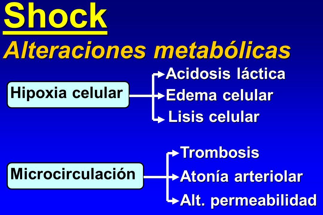 Shock Hipoxia celular Alteraciones metabólicas Microcirculación Acidosis láctica Edema celular Lisis celular Trombosis Atonía arteriolar Alt. permeabi