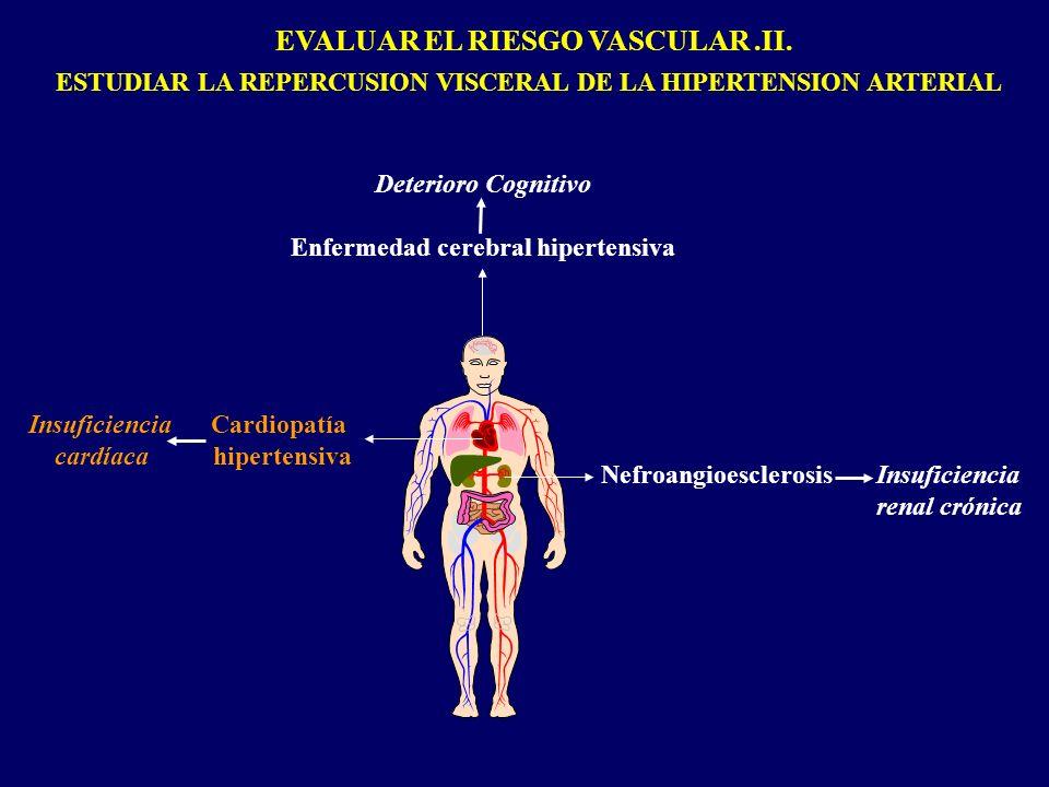 EVALUAR EL RIESGO VASCULAR.II. ESTUDIAR LA REPERCUSION VISCERAL DE LA HIPERTENSION ARTERIAL Deterioro Cognitivo Enfermedad cerebral hipertensiva Insuf