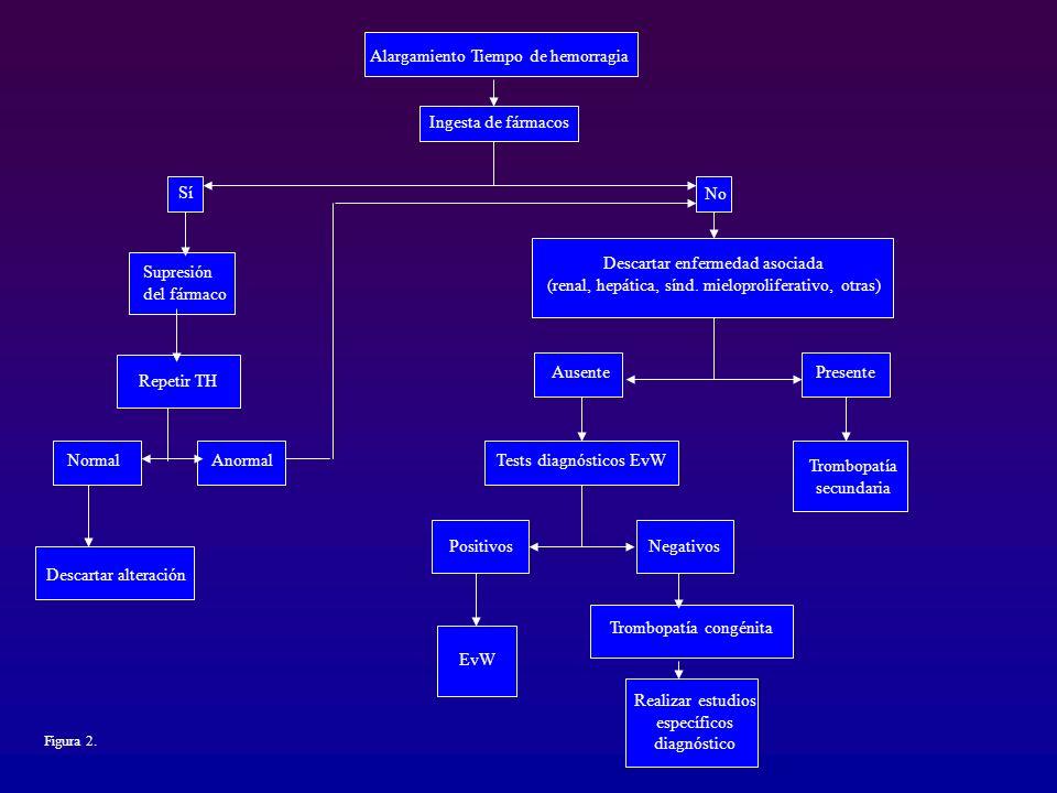 Alargamiento Tiempo de hemorragia Ingesta de fármacos Sí Supresión del fármaco Repetir TH NormalAnormal Descartar alteración Descartar enfermedad asoc