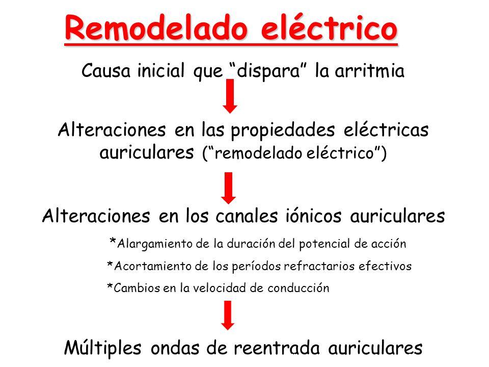 Remodelado eléctrico Causa inicial que dispara la arritmia Alteraciones en las propiedades eléctricas auriculares (remodelado eléctrico) Alteraciones