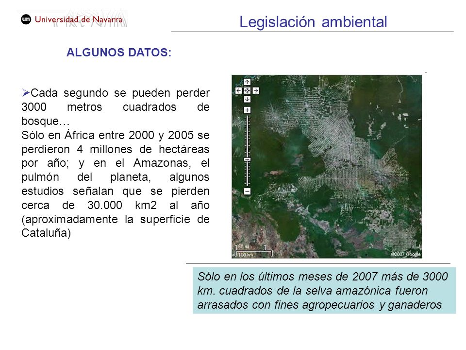Legislación ambiental ALGUNOS DATOS: Cada segundo se pueden perder 3000 metros cuadrados de bosque… Sólo en África entre 2000 y 2005 se perdieron 4 mi