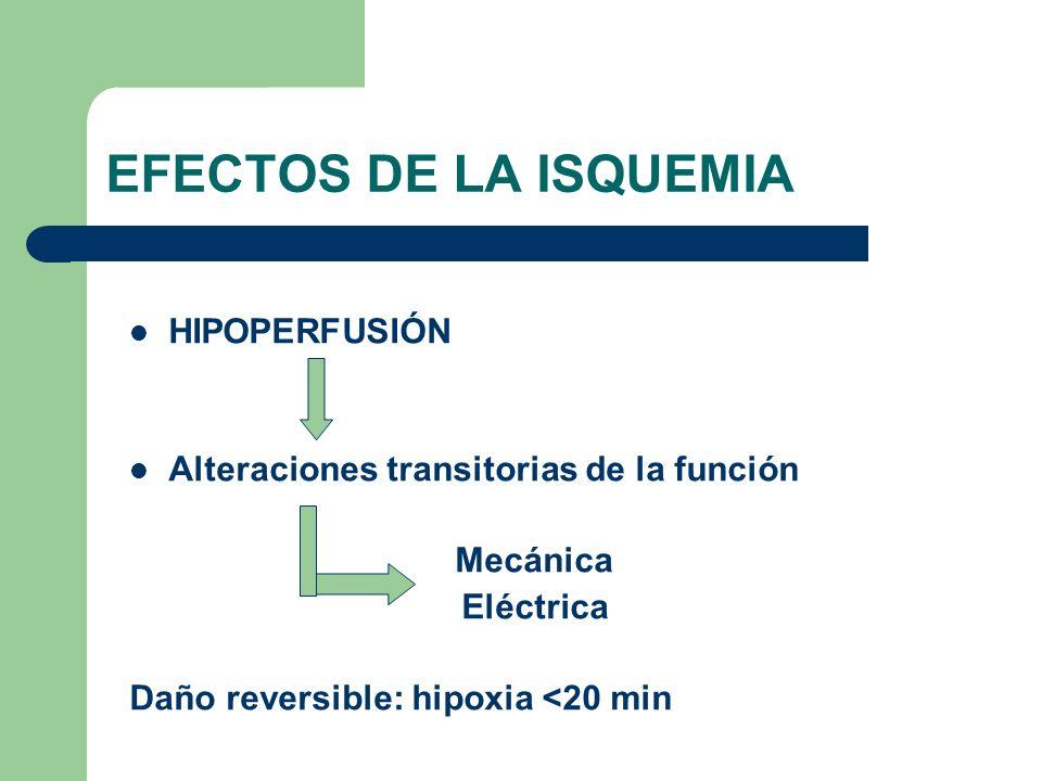 EFECTOS DE LA ISQUEMIA HIPOPERFUSIÓN Alteraciones transitorias de la función Mecánica Eléctrica Daño reversible: hipoxia <20 min
