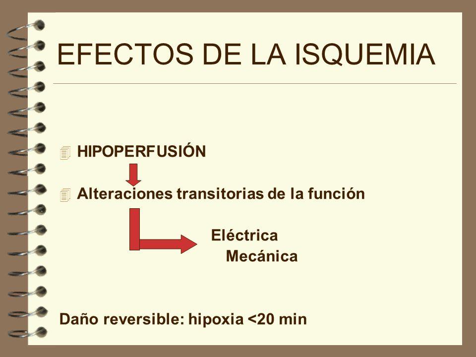 EFECTOS DE LA ISQUEMIA 4 HIPOPERFUSIÓN 4 Alteraciones transitorias de la función Eléctrica Mecánica Daño reversible: hipoxia <20 min