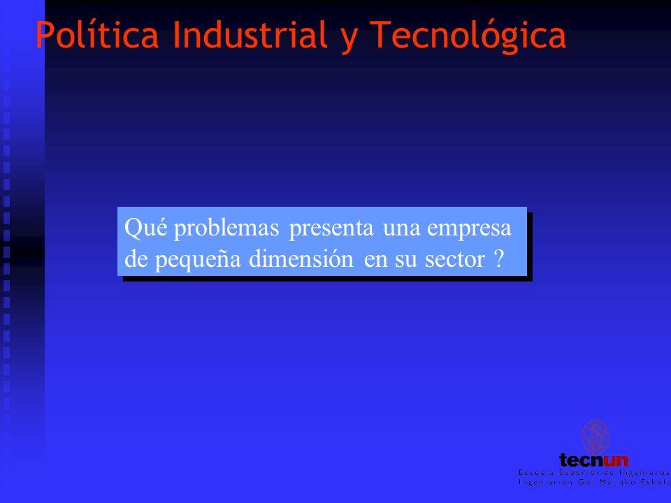 Política Industrial y Tecnológica Qué problemas presenta una empresa de pequeña dimensión en su sector ? Qué problemas presenta una empresa de pequeña