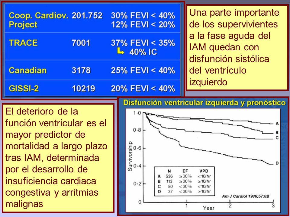 Una parte importante de los supervivientes a la fase aguda del IAM quedan con disfunción sistólica del ventrículo izquierdo El deterioro de la función