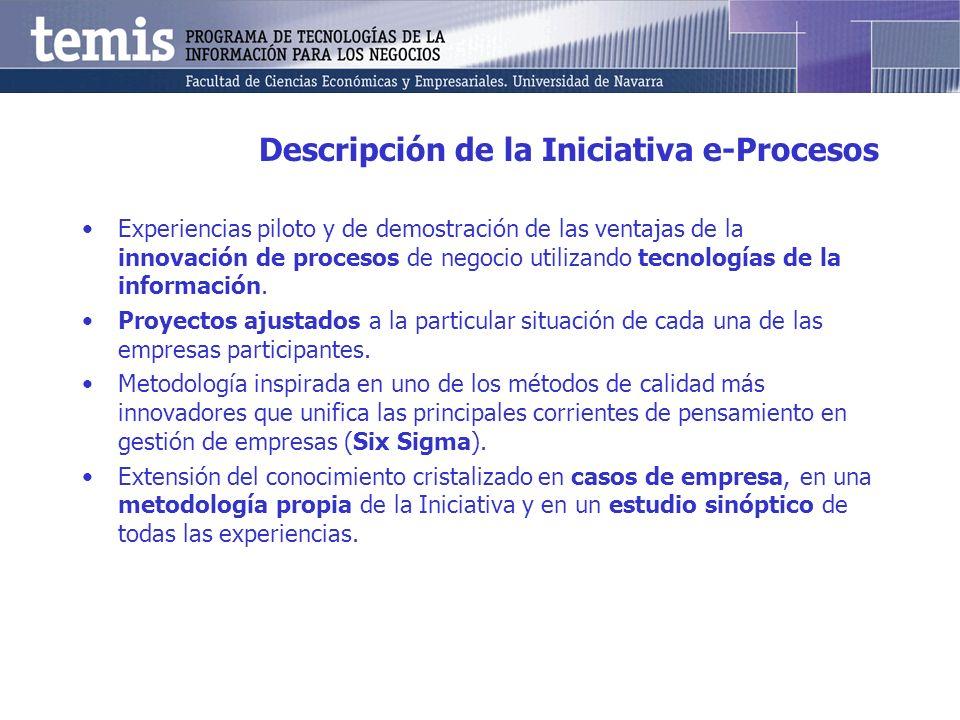Descripción de la Iniciativa e-Procesos Experiencias piloto y de demostración de las ventajas de la innovación de procesos de negocio utilizando tecnologías de la información.
