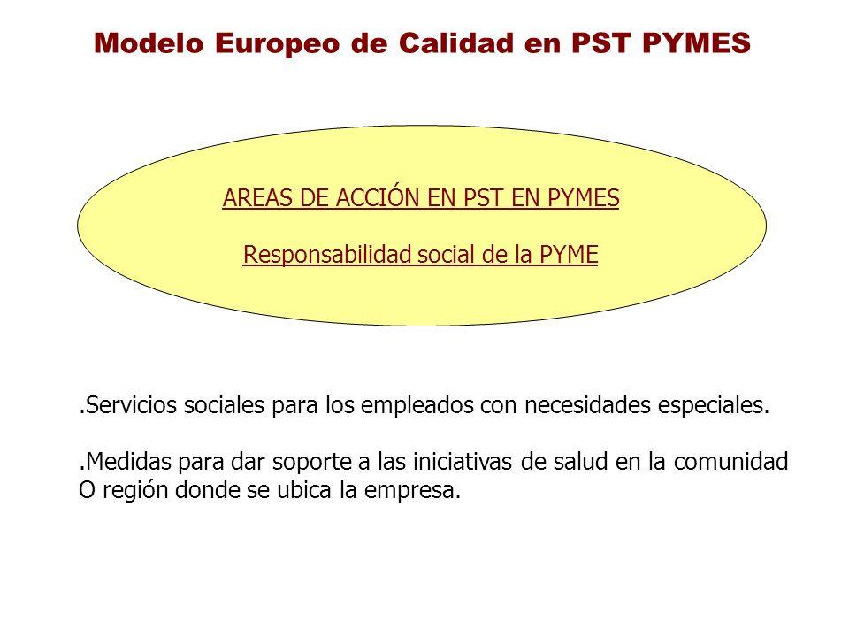 Modelo Europeo de Calidad en PST PYMES AREAS DE ACCIÓN EN PST EN PYMES Responsabilidad social de la PYME.Servicios sociales para los empleados con nec