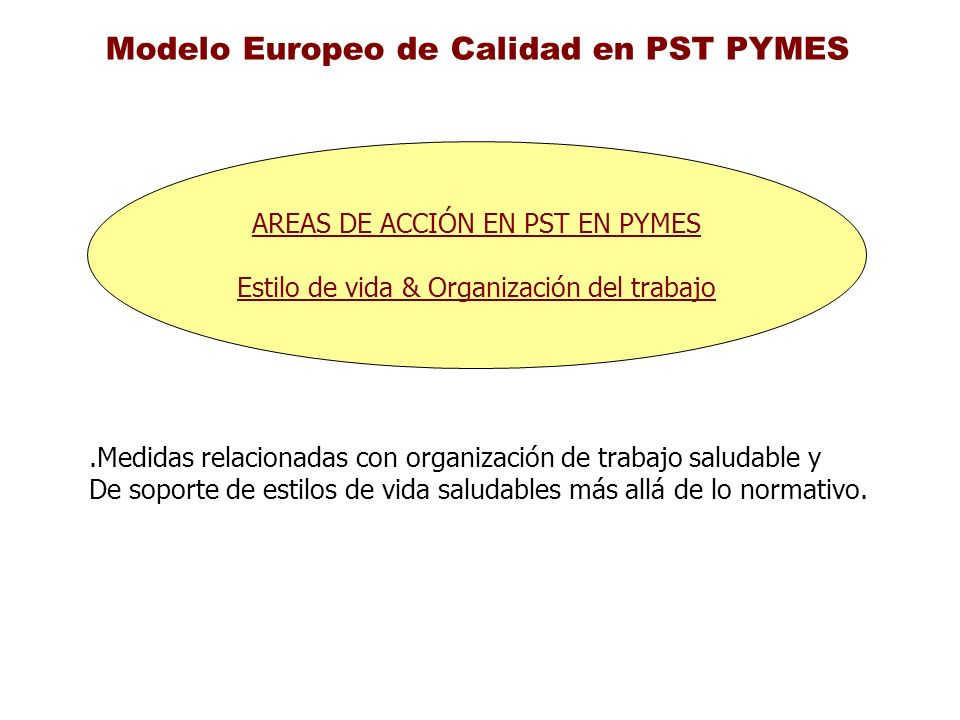 Modelo Europeo de Calidad en PST PYMES AREAS DE ACCIÓN EN PST EN PYMES Estilo de vida & Organización del trabajo.Medidas relacionadas con organización