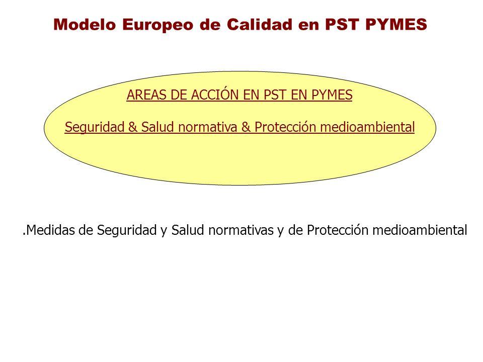 Modelo Europeo de Calidad en PST PYMES AREAS DE ACCIÓN EN PST EN PYMES Seguridad & Salud normativa & Protección medioambiental.Medidas de Seguridad y