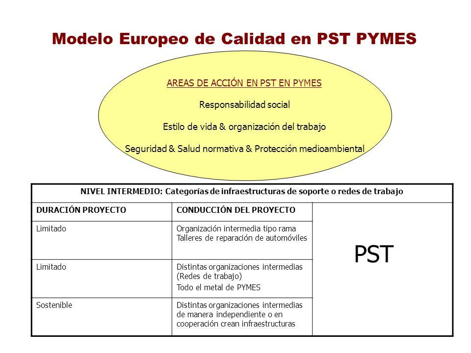 Modelo Europeo de Calidad en PST PYMES AREAS DE ACCIÓN EN PST EN PYMES Responsabilidad social Estilo de vida & organización del trabajo Seguridad & Sa