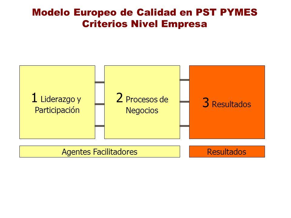 Modelo Europeo de Calidad en PST PYMES Criterios Nivel Empresa 1 Liderazgo y Participación 2 Procesos de Negocios 3 Resultados Agentes FacilitadoresRe