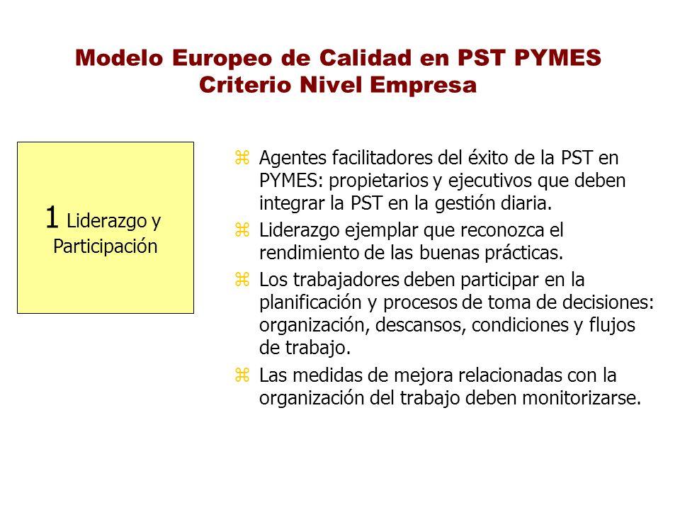 Modelo Europeo de Calidad en PST PYMES Criterio Nivel Empresa 1 Liderazgo y Participación z Agentes facilitadores del éxito de la PST en PYMES: propie