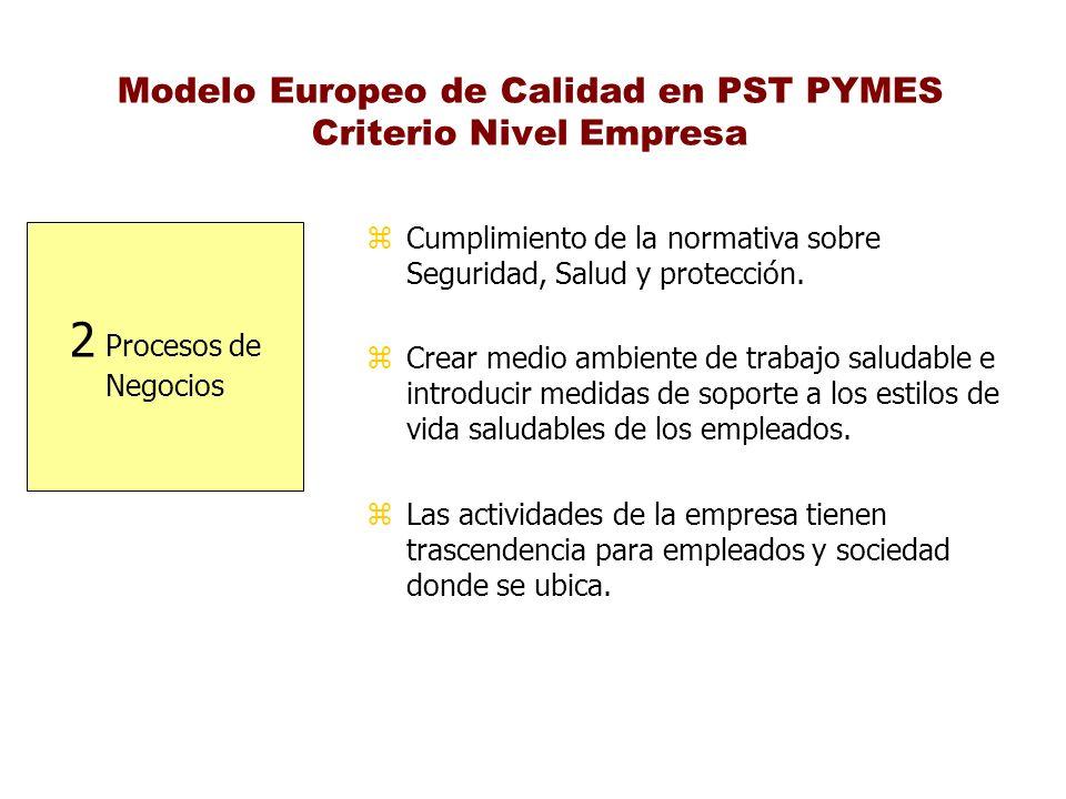 Modelo Europeo de Calidad en PST PYMES Criterio Nivel Empresa 2 Procesos de Negocios z Cumplimiento de la normativa sobre Seguridad, Salud y protecció