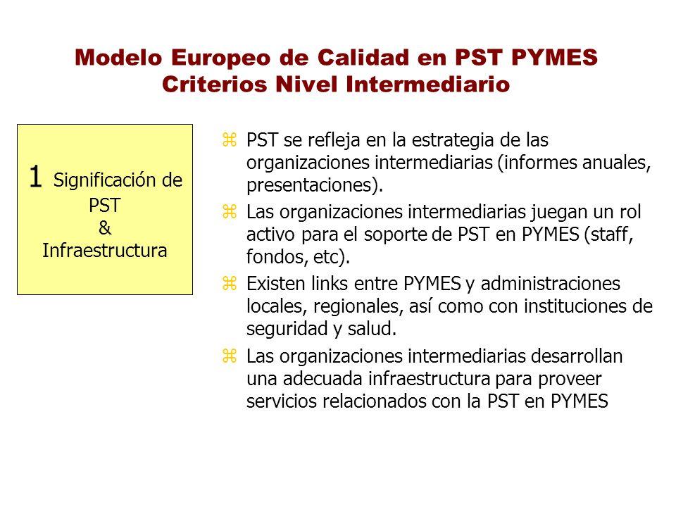 Modelo Europeo de Calidad en PST PYMES Criterios Nivel Intermediario 1 Significación de PST & Infraestructura z PST se refleja en la estrategia de las
