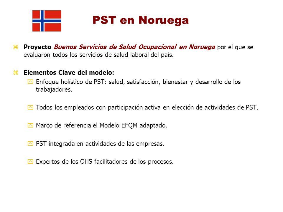 PST en Noruega zProyecto Buenos Servicios de Salud Ocupacional en Noruega por el que se evaluaron todos los servicios de salud laboral del país. zElem