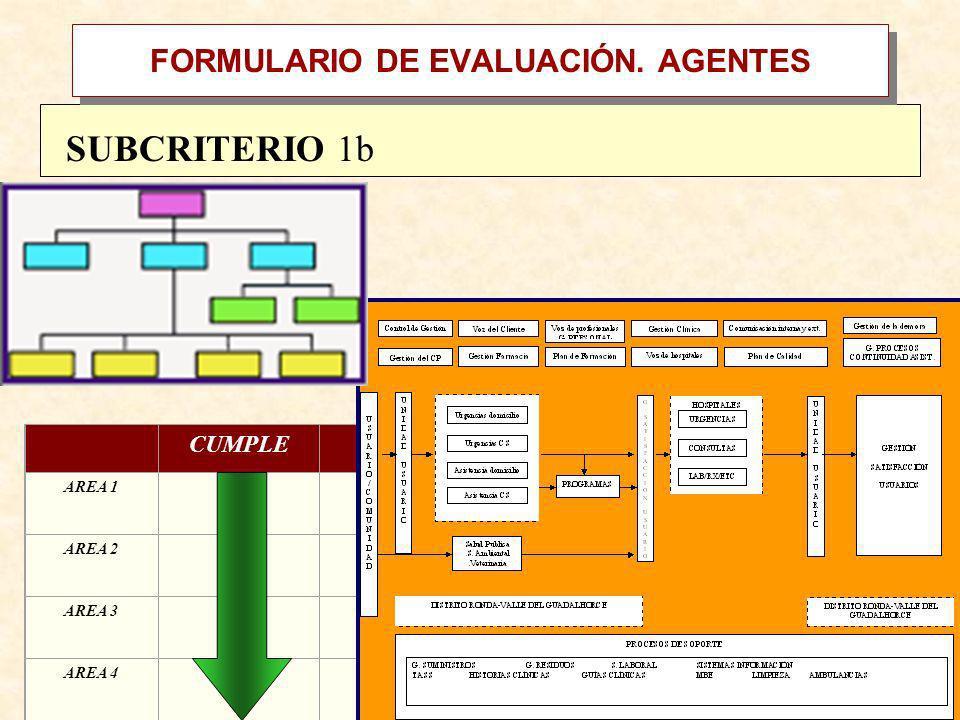 FORMULARIO DE EVALUACIÓN. AGENTES CUMPLE NO CUMPLE AREA 1X AREA 2X AREA 3 AREA 4 SUBCRITERIO 1b Procesos y Actividades