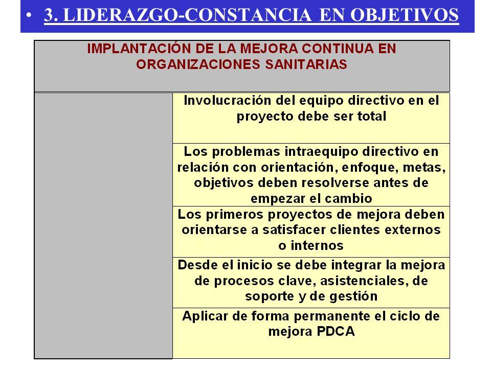 3. LIDERAZGO-CONSTANCIA EN OBJETIVOS