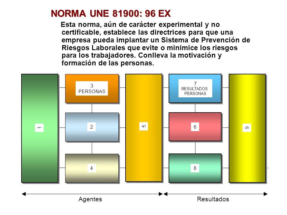 NORMA UNE 81900: 96 EX Esta norma, aún de carácter experimental y no certificable, establece las directrices para que una empresa pueda implantar un S